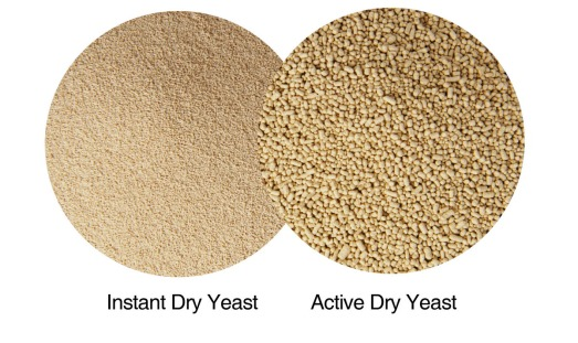 Active-dry-yeast-vs.-Instant-Dry-Yeast-granule-size1